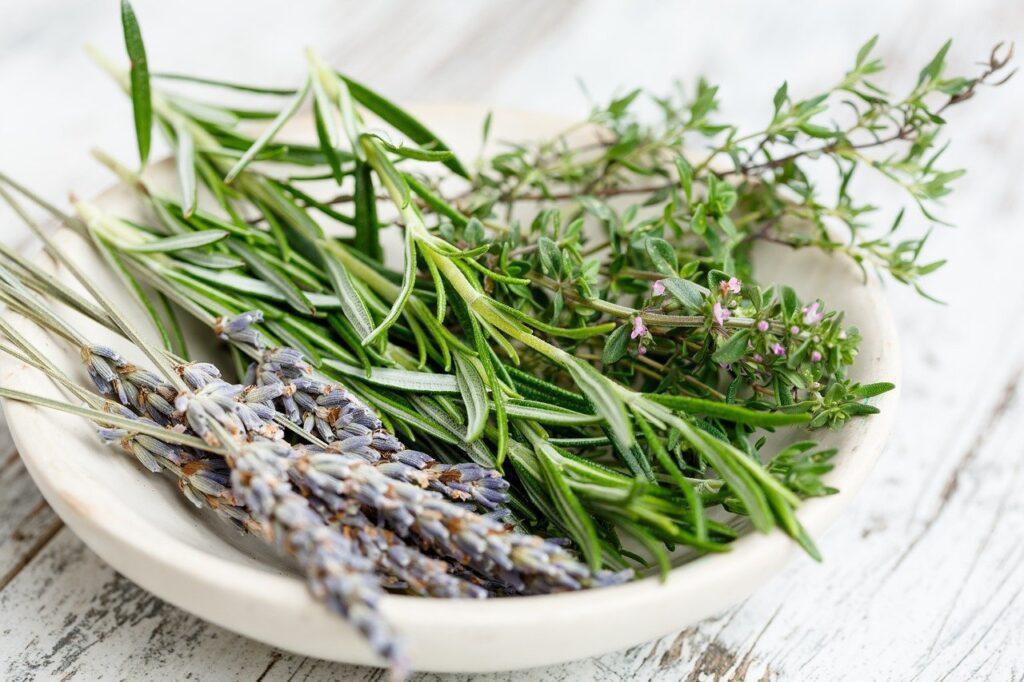 Mediterrane Küche- Kräuter der Provence