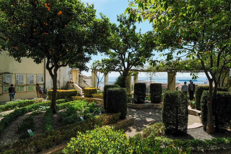 Der botanische Garten von Salerno